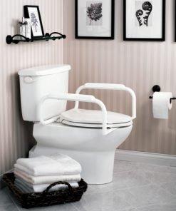 Moen Toilet Safety Bar