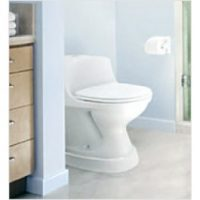 Pleasing Extra Wide Tall Ette Elevated Toilet Seat With Legs Biorelief Gamerscity Chair Design For Home Gamerscityorg