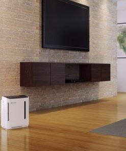 Revive Air Purifier and Humidifier